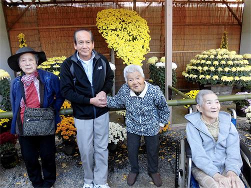 平成28年の菊まつり鑑賞会